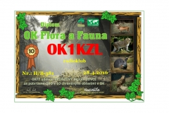 okff_ok1kzl_hb381